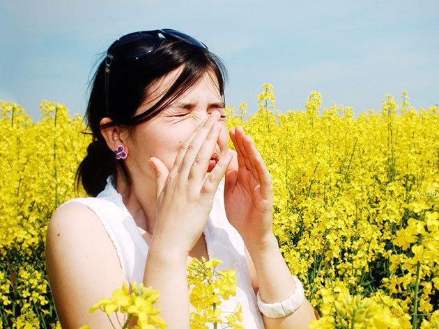 Komplett ételintolerancia teszt és allergia vizsgálat, pollen, candida (200 féle ételre, összetevőre) + állatszőr + nehézfém teszt