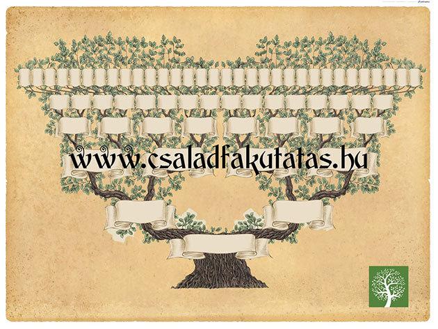 Családfakutatás / ősfakutatás az 1700-as évekig visszamenőleg Magyarország legnagyobb, valódi és igazolt szakmai múltra visszatekintő, piacvezető családtörténeti irodája által
