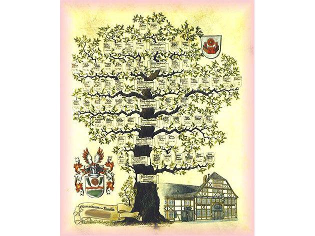 Családfakutatás házastársaknak az 1700-as évekig visszamenőleg / klasszikus családfa elkészítése 2 fő részére