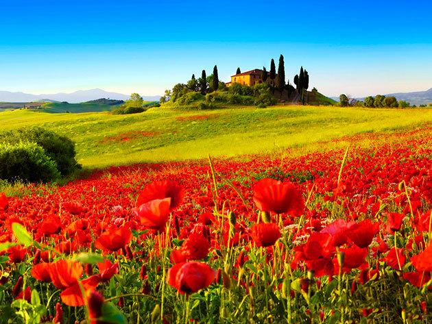 Toscana -  2016.05.22 - 05.27. / Desiderio király birodalma / 6 nap, 5 éj utazással, szállással, programokkal