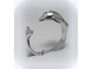Delfin_middle
