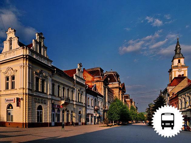 Beregszász - Történelmi látnivalók Kárpátalján! Városnézés és bevásárlótúra a piacon és helyi üzletekben, utazás kényelmes busszal március 18-án