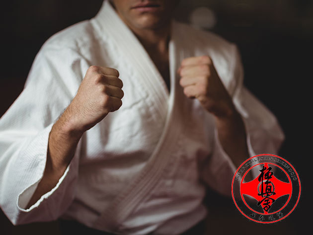 Kyokushin full-contact karate oktatás gyermekeknek és felnőtteknek - havi bérletek (II. kerület)
