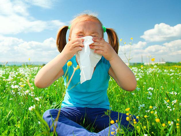 Gyakori gyermekkori allergiák szűrése gyermekek részére vérvétellel, magánlaboratóriumban, már 4 éves kortól elvégezhető a vizsgálat!