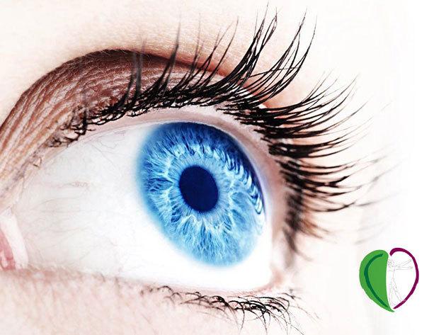 Íriszdiagnosztikai vizsgálat orvosi kiértékeléssel. A Te szemed miről árulkodik? Már 10 éves kortól elvégezhető / XIII. kerület - mert fontos az egészség!