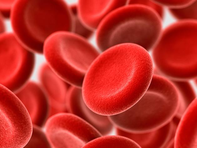 Vércsepp vitalitásmérés, gyors EKG vizsgálat és vércukorszint mérés