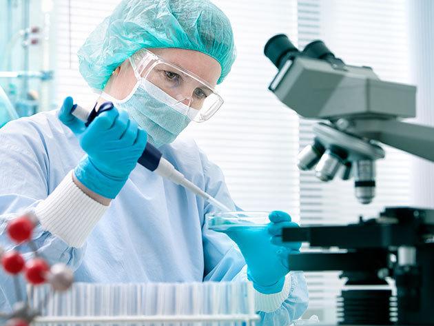 Véranalízis / vitalitásmérés, választhatóan akár Candida teszttel is, gyors EKG vizsgálattal, vércukor vizsgálattal / V. ker.