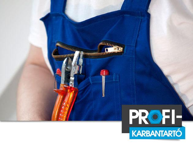 Konvektor átvizsgálása, tisztítása, felkészítése a fűtési szezonra - Budapest területén kiszállítási díj nélkül