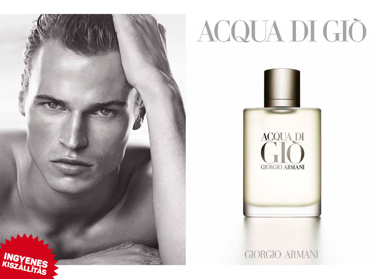 Giorgio Armani - Acqua Di Gio For Men EDT (50/100/200 ml) ingyenes kiszállítással  / aromás-aquás illat