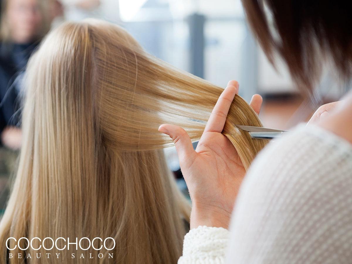 Hajvágás, akár rövidülés nélkül, argánolajos tápláló pakolással, minden hajhosszra - A Mac split and hair trimmel csak a töredezett részeket távolítja el / Cocochoco Beauty (XIII. ker.)
