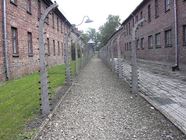 2018.06.29. / Auschwitz – Krakkó! Non-stop utazás / fő
