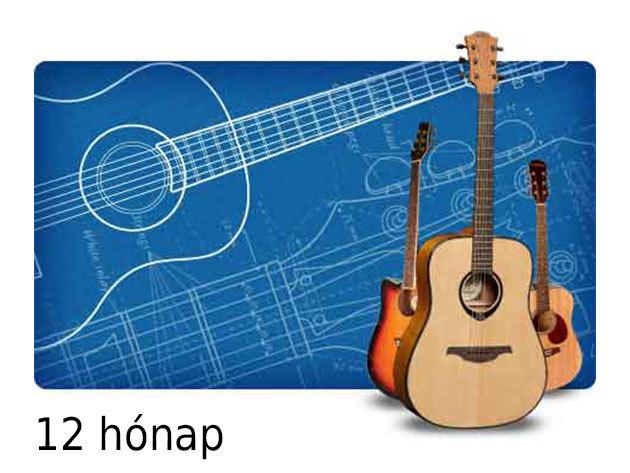 12 hónapos tagság - Online gitároktatás Electric Guitar (Totally Guitars) - Max Rich világhírű oktatócsomagja