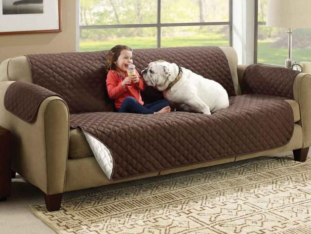 Couchcoat-1024x768_1_large