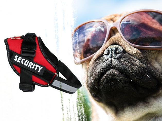 K9-es kutyahám, mely nem a kutya torkát terheli, hanem a mellkasán vezeti el az erőt