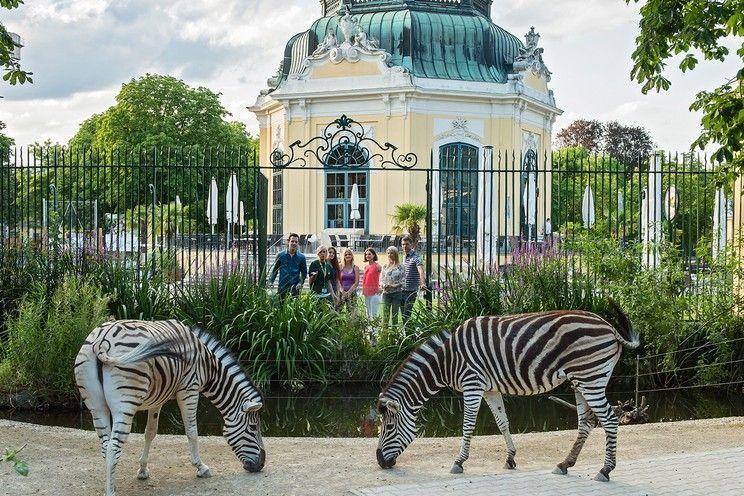 2019. június 15. / Buszos kirándulás a bécsi Állatkertbe, útközben Heindl Csokigyár látogatással / fő