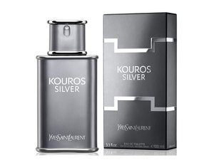 Yves-saint-laurent---kouros-silver-edt_middle