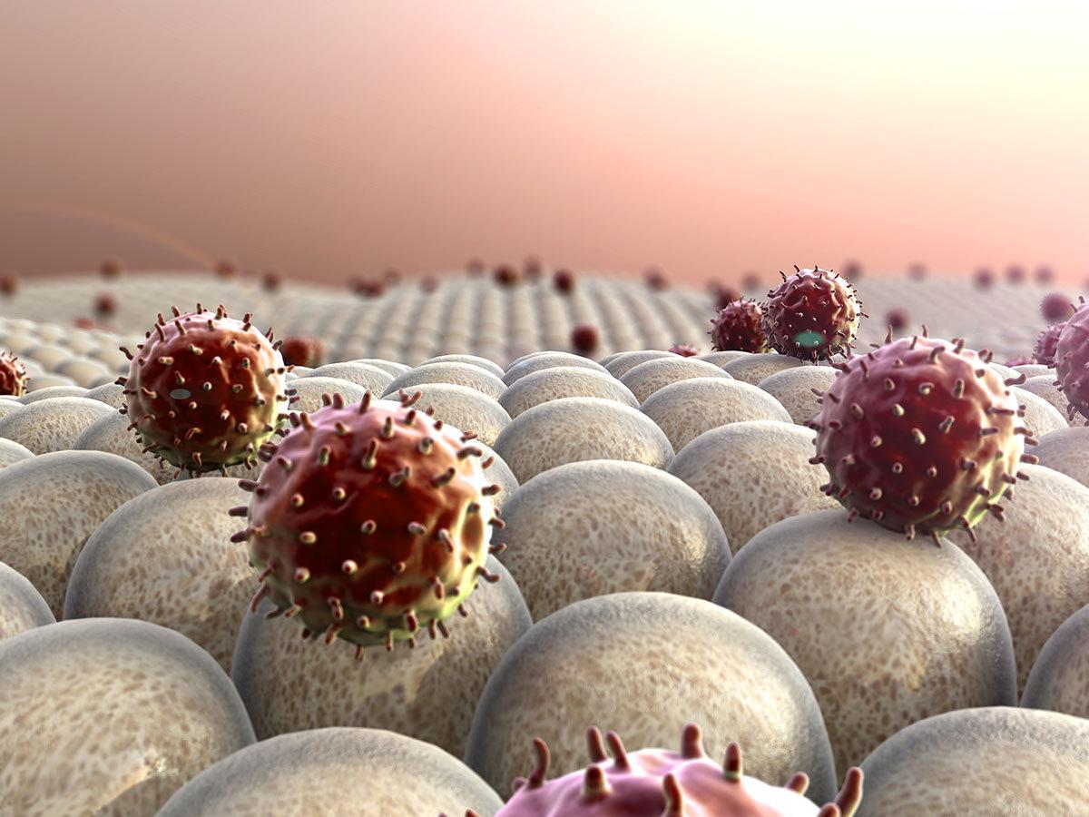 Immunrendszer Aktiválása 60 percben