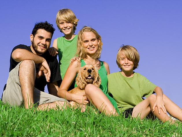 NELSON biorezonanciás állapotfelmérés, allergia teszt tűszúrás nélkül, fogyókúrás- és étrend tanácsadás!