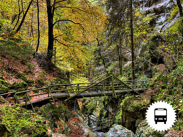 Túra a vadregényes Medve-szurdokban - buszos utazás Ausztriába júniusban és szeptemberben / fő