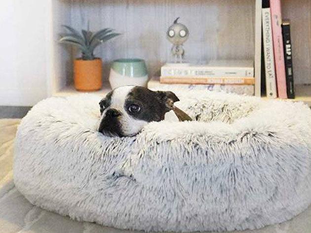 Kutya, macska fekhely - kényelmes, melegtől és hidegtől védett helyet biztosít kedvenced számára