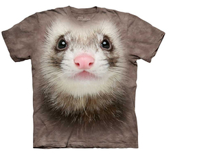 Termek_ferret_face_middle