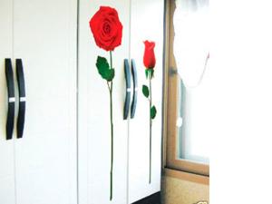 Rózsák falmatrica (A kinyílt rózsa 138cm magas)
