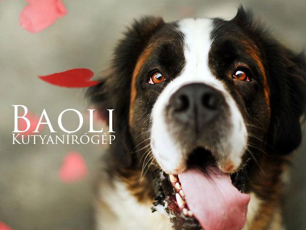 Baoli professzionális kutyanyírógép 9.900 Ft helyett 4.990 Ft-ért!