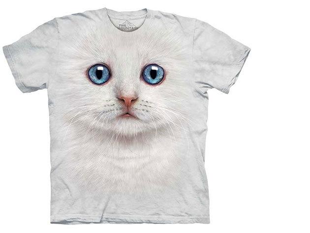 Ivory Kitten