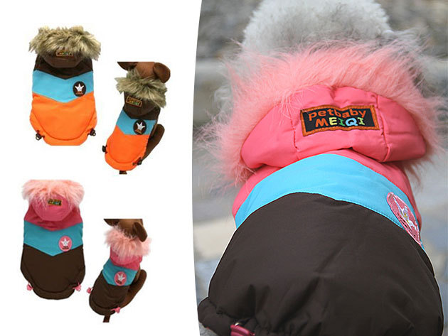 Kutyaruha több méretben és színben - minőségi, divatos kiegészítők