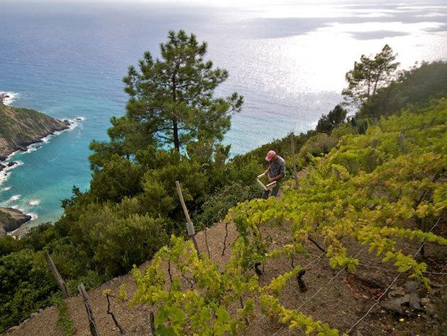 RÉSZLETFIZETÉS! Körutazás a Cinque Terre legszebb falvaiban, a Ligúr partokon - 1 fő részére, 7nap/6 éj (2014.május 18 - 24)