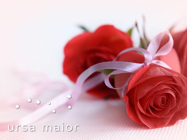 Vörös Örök rózsa anyák napjára - egy gyönyörű virág, mely nem hervad el