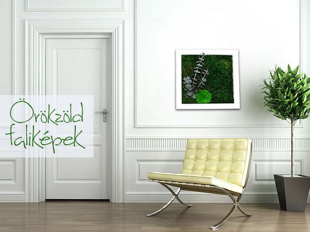 3D örökzöld faliképek tartósított növényekből - Költöztesd otthonodba az üde természetet