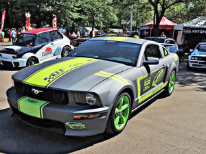 Mustang01medium_middle