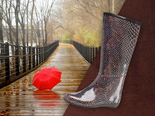 Red Rock divatos, kígyómintás női gumicsizma az esős, latyakos hónapokra