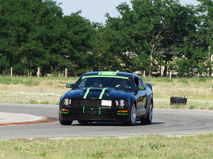 Mustang03large_middle