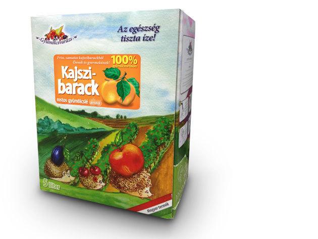 100% gyümölcslé - KAJSZIBARACK Dobozzal