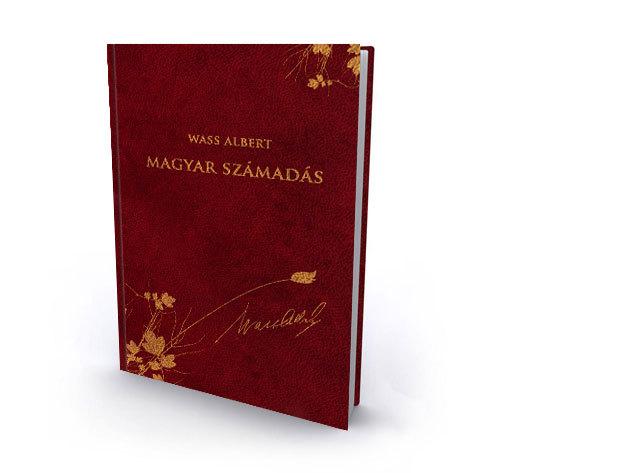 47. kötet - Magyar számadás - Publicisztika - cikkek, jegyzetek