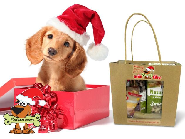 """Prémium minőségű karácsonyi """"jutalomkosár"""" kutyáknak"""