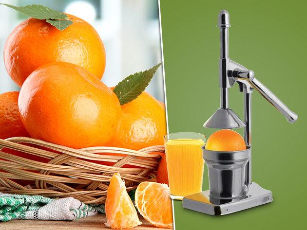 Narancsprés - masszív, rozsdamentes nemesacél kézi szerkezet